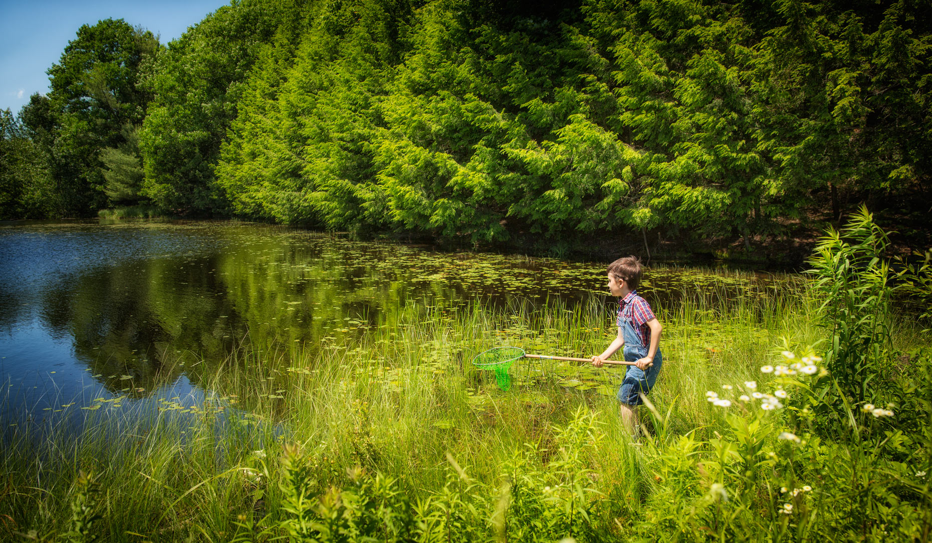 Young boy catching frogs at a pond in Cumberland, Maine in a series of photos for the Trust for Public Land